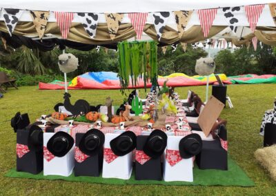 Cowboy Party Theme - One Dell of a Party