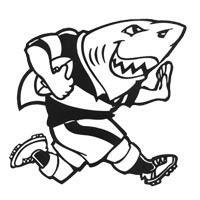 Sharks Rugby Party Theme