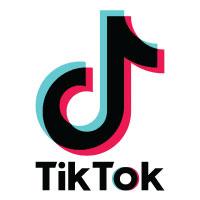 TikTok Party Theme